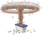 elezioni_italia